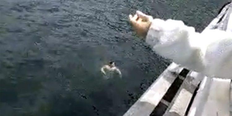 Insólito, prefectos no rescataron al turista que se arrojó al agua en Lago Lácar y murió ahogado (video)